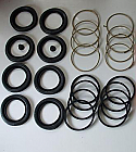 FRONT BRAKE CALIPER REPAIR SEALS KITS x2 (Aston Martin DB7) (** 3.2 Only **) (1994- 99 Only)